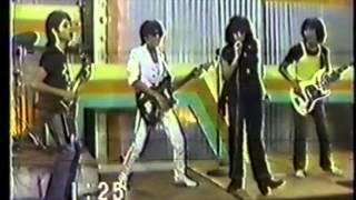 Queen of Rock Sampaguita