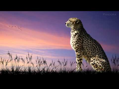 Marcus Warner - Africa [Beautiful Inspirational Uplifting]