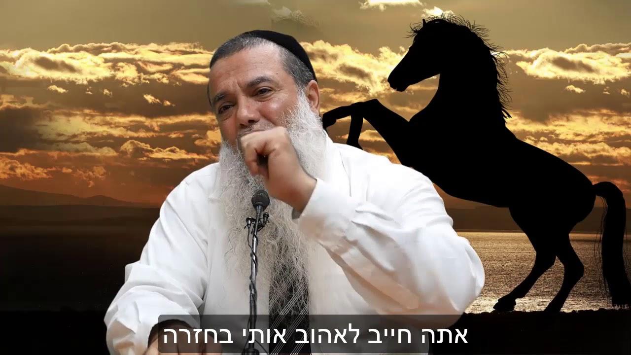 אמונה קצר: מגיע לבורא עולם שנשמח אותו - הרב יגאל כהן HD - מומלץ!!!