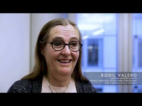 Bodil Valero - Shadow Rapporteur on Defence Industrial Development Programme | Sweden - PART 2
