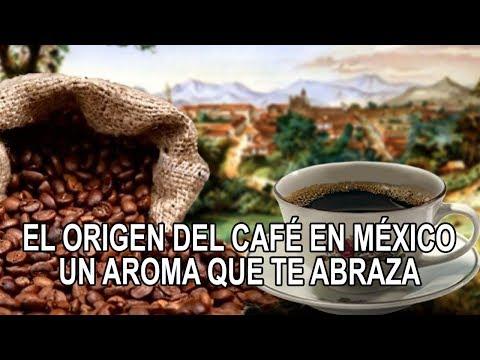 El origen del café en México – un aroma que te abraza