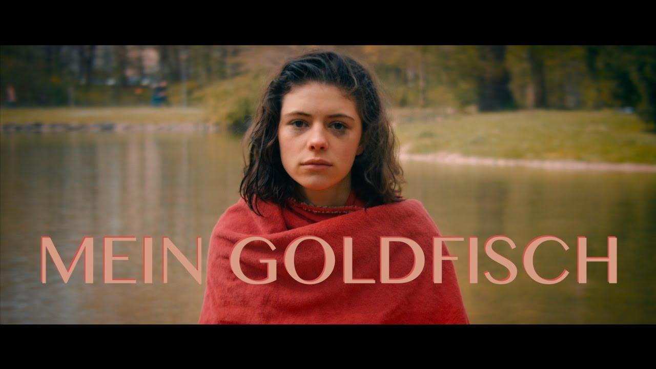 GESTERN IST MEIN GOLDFISCH GESTORBEN - YouTube