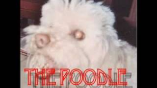 Scan-tv - The Poodle Trailer