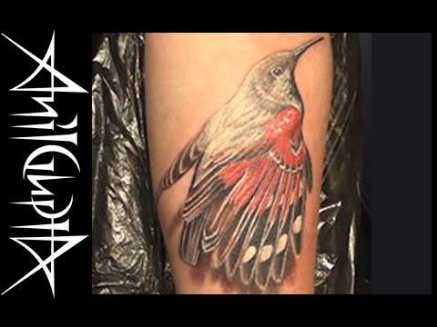 Anil Gupta Tattoo Nature 0203 MAY2012.mov