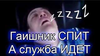 Видео приколы (Гаишник спит, а служба идет)