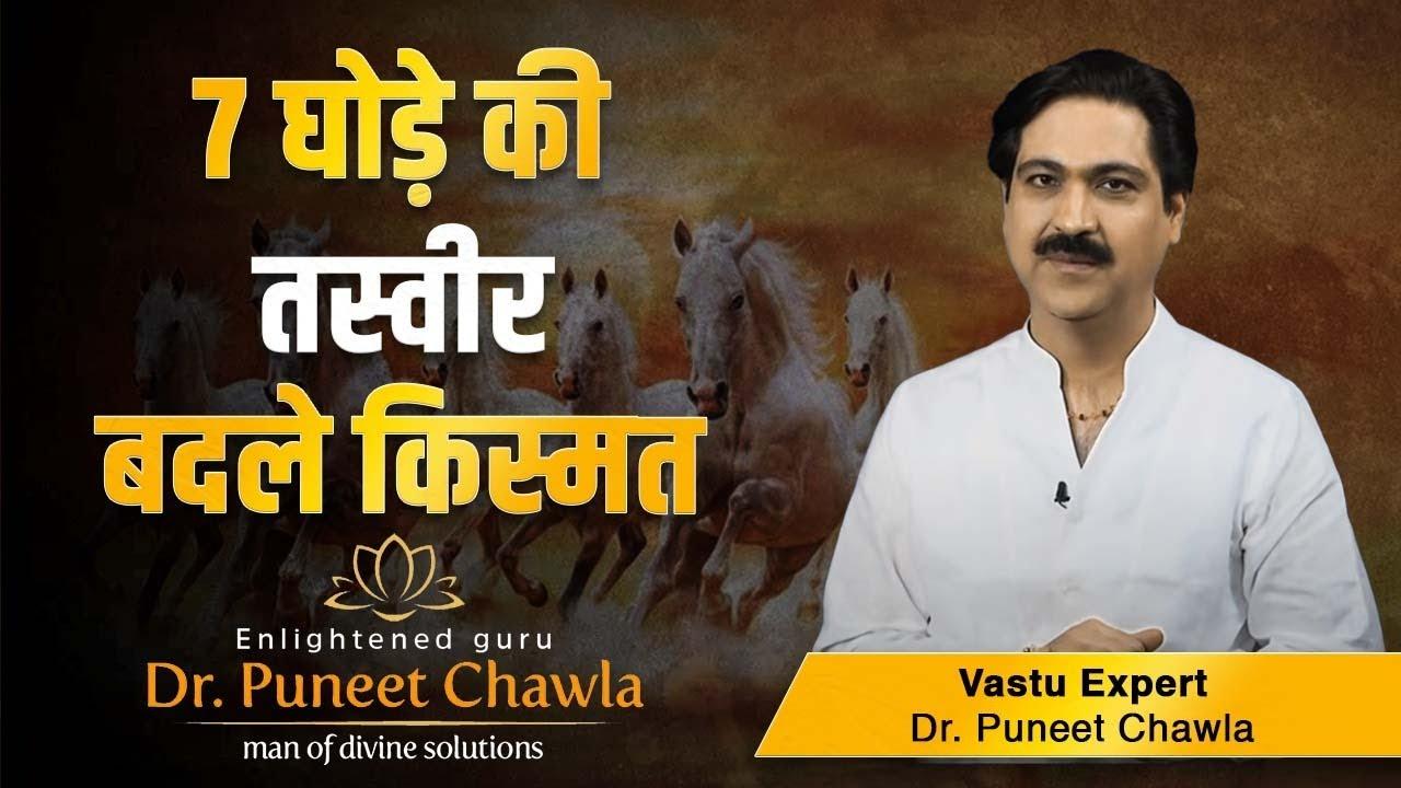 Vastu And Seven Horses Horse And Vastu Dr Puneet Chawla Vastu