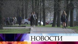 Москвичей ждет теплая погода до конца рабочей недели.