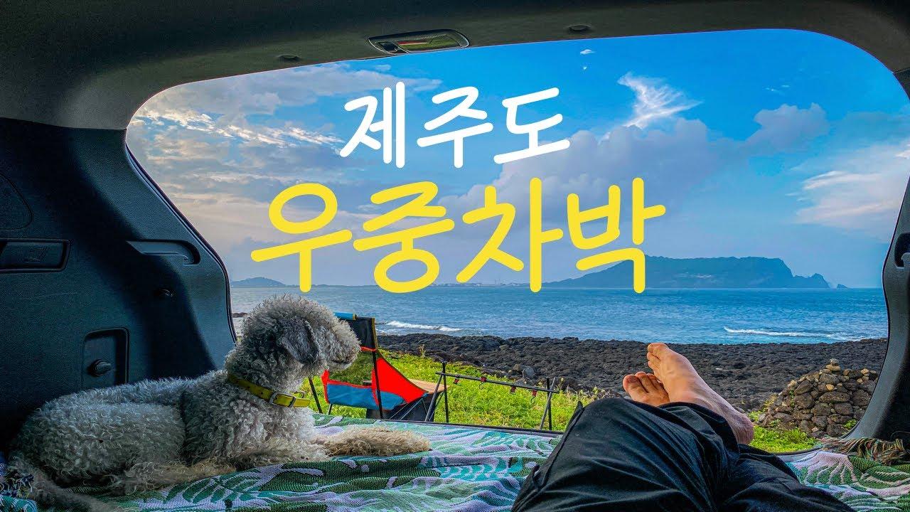 성산일출봉이 보이는 곳에서 강아지와 함께 우중차박