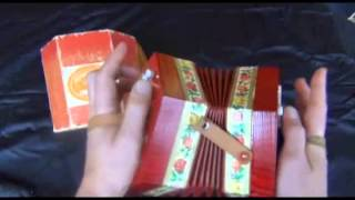 Scholer 02: Small D A Scholer German Concertina Facts