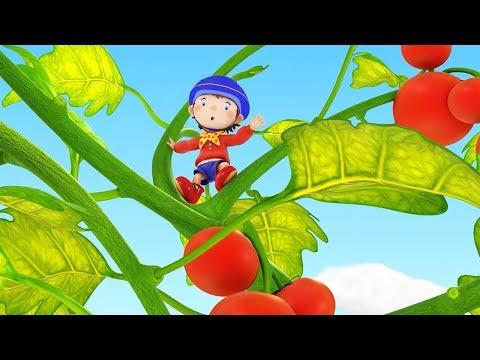 Noddy In Toyland | Tessie's Garden Grows And Grows | Noddy English Full Episodes