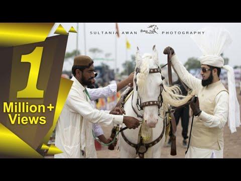 Sahibzada Sultan Muhammad Ali ♦ M.H Sultania Awan Horse Neza Baaz Club