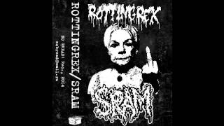 Rotting Rex / SRAM  - split tape 2014