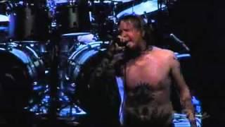 Fear Factory - Final Exit Live