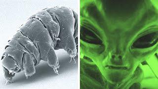 Reasons We Haven't Found Aliens YET