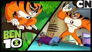 Ben 10 Deutsch | Die besten momente Tiger | Cartoon Network