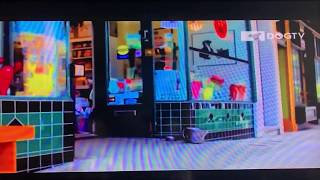 Dogs shop at Noe Valley Pet Co. in SF