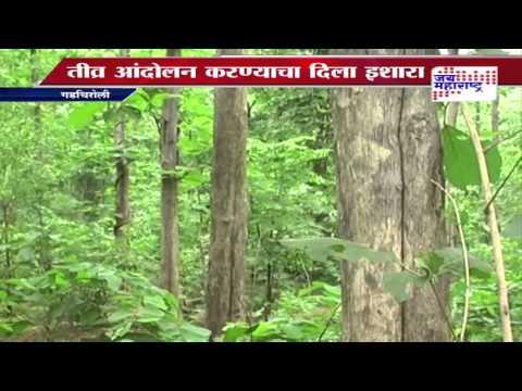Gadchiroli forest will undergo forest division