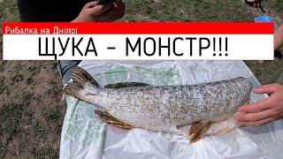 ЩУКА в мае Рыбалка на ДНЕПРЕ Рыбалка 2020 Поймали и СРАЗУ приготовили