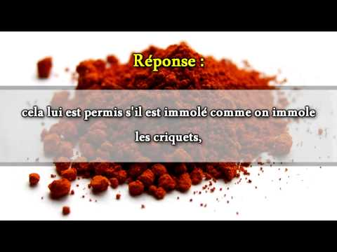 le colorant alimentaire rouge e120 sheikh mohammad ali ferkous youtube - Colorant E120