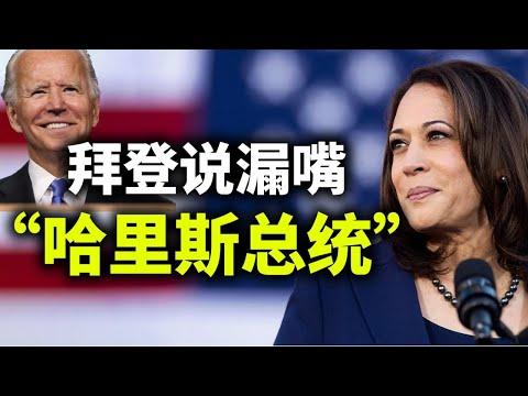 拜登说哈里斯才是总统;中美会谈气氛诡异,习近平恐一无所获;普京挑战拜登;免费发钱的隐忧(政论天下第378集 20210318)天亮时分