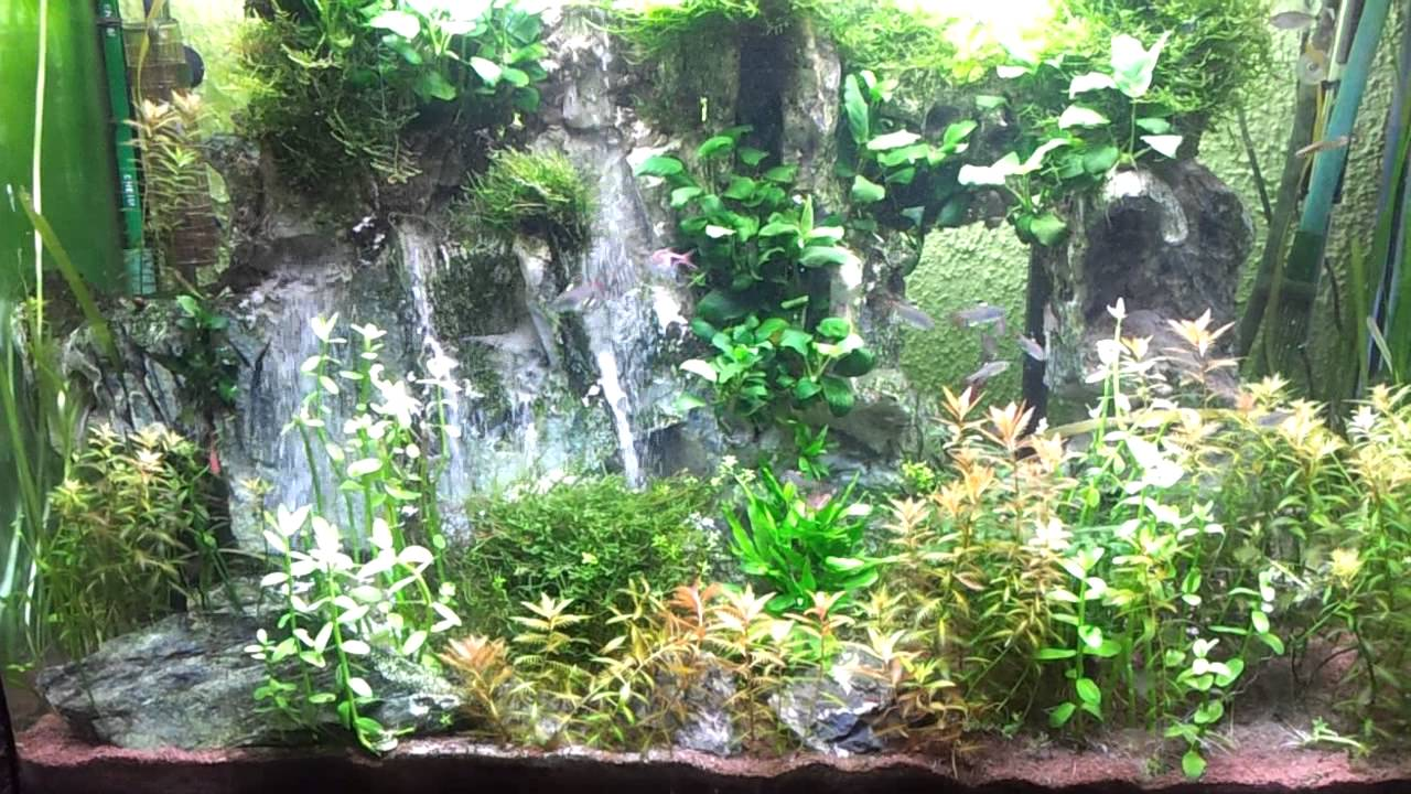 Waterfalls in aquarium youtube for Sable pour aquarium