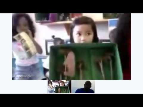 Little Wonders Learning Center Biome Hangout