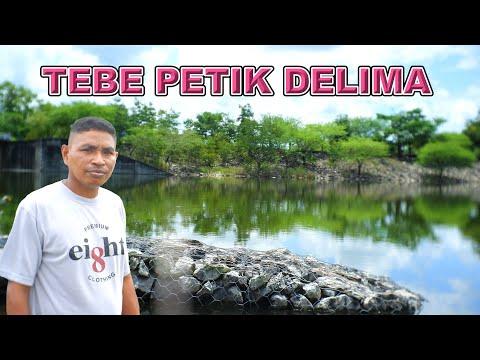 TEBE PIKIR-PIKIR Lagu Timor Terbaru