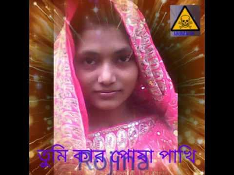তুমি কার পোষা পাখি কাজল বরন আখি thumbnail