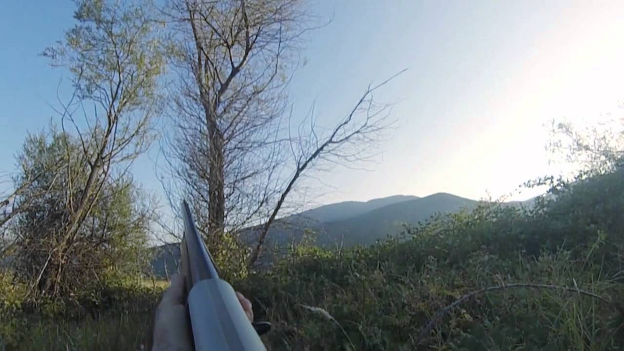 Download FASSA TRYGONI treiler YouTube 720p