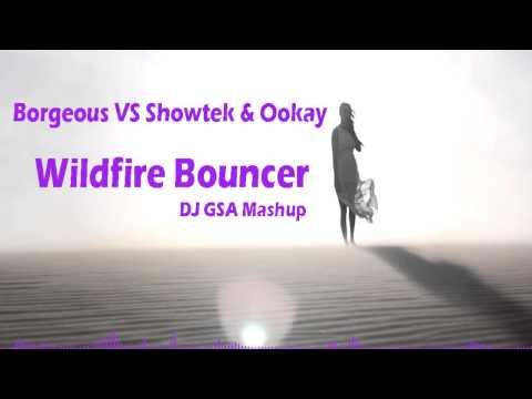 Borgeous VS Showtek & Ookay - Wildfire Bouncer (DJ GSA Mashup)