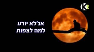 שלוש בלילה - טיפקס - שרים קריוקי