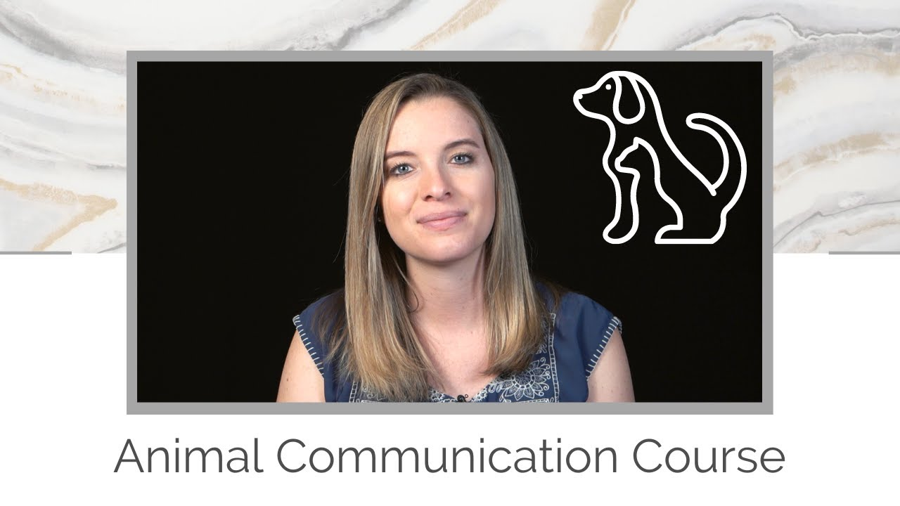 Animal Communication Course Now Available!