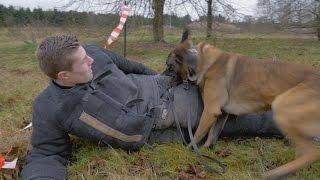Ontsnappen aan politiehond | Kaal of Kammen