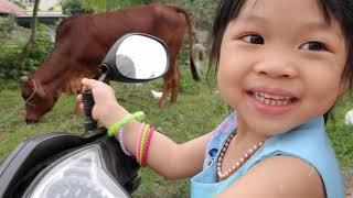 Nhong nhong nhong ba làm con ngựa.