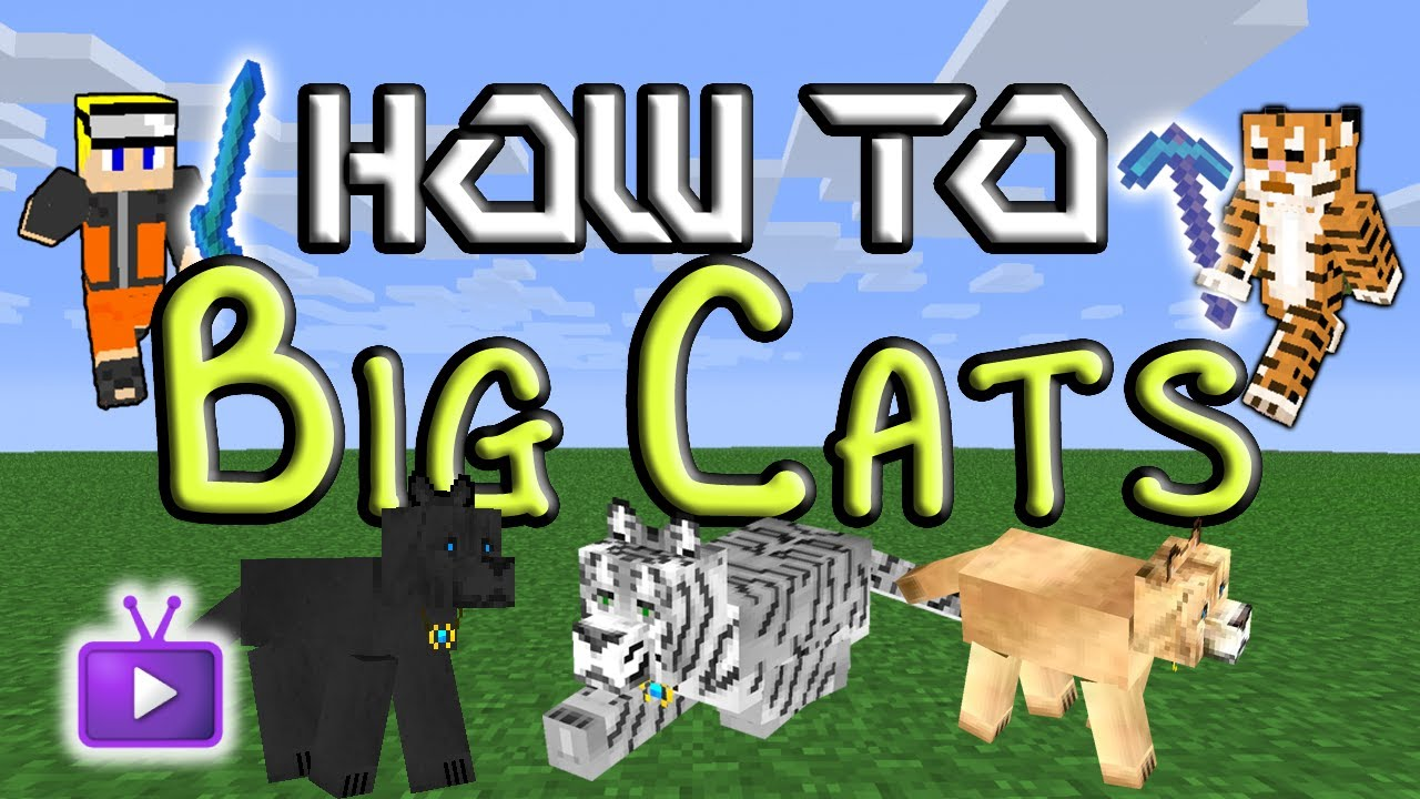 Minecraft Big Cats Taming