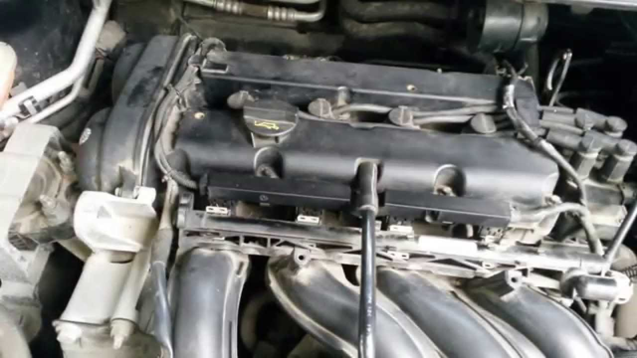 Sunet Motor Ford Focus 1 6 16v 100cp An 2008 Ford Focus Engine Sound Gasoline 1 6 100hp Youtube