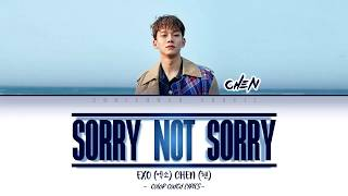 Download Chen (첸) - Sorry Not Sorry (하고 싶던 말) [Color Coded Lyrics |Han|Rom|Eng|가사] Mp3