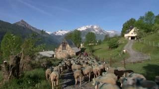 Gîte des Moulins - Location gite Pyrénées, val d'Azun