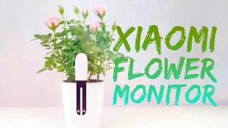 Xiaomi Flower Monitor   Обзор   GearBest