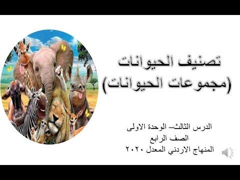 تصنيف الحيوانات مجموعات الحيوانات Youtube