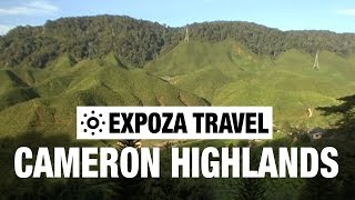 Cameron Highlands (Malaysia) Vacation Travel Video Guide