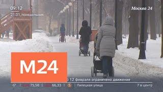 Смотреть видео В России могут пересмотреть продолжительность новогодних каникул - Москва 24 онлайн