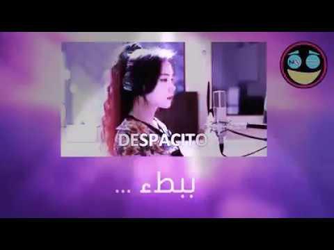 Despacito lyrics in arabic (translated)