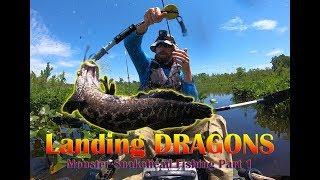 Landing Dragons Huge Northern Snakehead, Part 1 Optimized