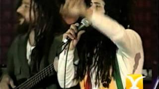 Pablo Herrera y Gondwana, Armonía de amor, Festival de Viña 2000