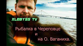 Рыбалка на реке Шексна в городе Череповец и острове Ваганиха сентябрь 2020