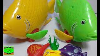 لعبه #السمك للاطفال# و لعبه الحمام!!