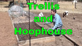 Trellis and Mini Greenhouse in One -- Cattle Panels in the Garden