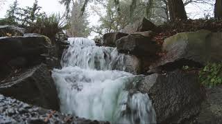 Recording A Park Waterfall With Some LOM Mikro Usi Microphones