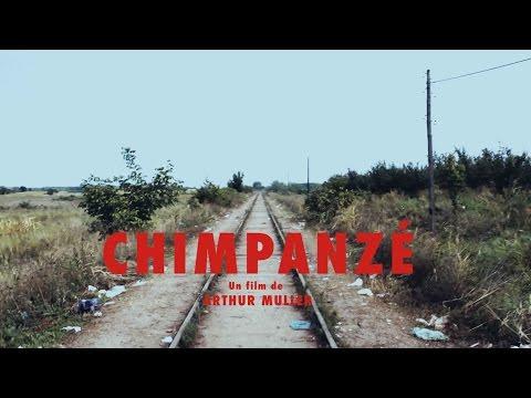 Odezenne - Chimpanzé - Clip Documentaire officiel